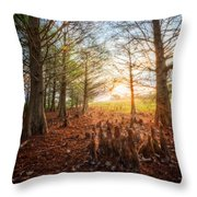 Light In The Cypress Trees II Throw Pillow