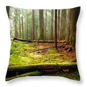 Light In The Forest Throw Pillow by Idaho Scenic Images Linda Lantzy