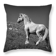 Light Mustang 1 Bw Throw Pillow by Roger Snyder