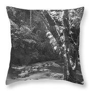 Light On Tree Throw Pillow
