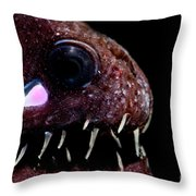 Light Organ Of Threadfin Dragonfish Throw Pillow