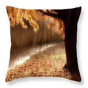 Light Painting Throw Pillow