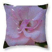 Light Pink Rose Throw Pillow