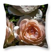Light Pink Roses Throw Pillow