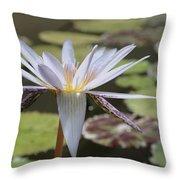 Light Purple Lily Throw Pillow