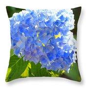 Light Through Blue Hydrangeas Throw Pillow