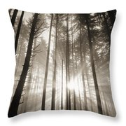 Light Through Forest Throw Pillow