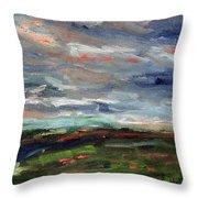 Light Upon The Marsh Throw Pillow
