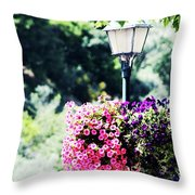 Lighted Flowers Throw Pillow
