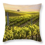 Lighted Vineyard Throw Pillow by Sharon Foster