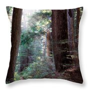 Lighting The Path Throw Pillow
