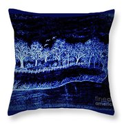 Lights On The Farm's Pond At Night Throw Pillow