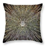 Lightspeed Framework Throw Pillow
