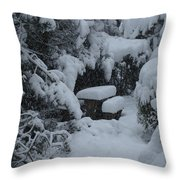 A Snowy Secret Garden Throw Pillow