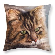 Like A Tiger Throw Pillow