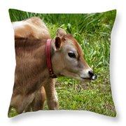 Lil Bull Throw Pillow