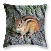 Lil Chipmunk Throw Pillow