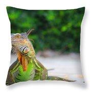 Lil Iguana Throw Pillow