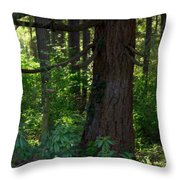 Lil' Piece Of Heaven Throw Pillow
