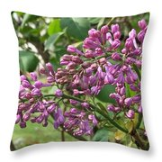 Lilac Buds Cluster Throw Pillow