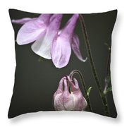 Lilac Columbine 3 Throw Pillow