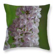 Lilac Dreams With Corner Decorations Throw Pillow