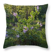 Lilac In Sunshine Throw Pillow