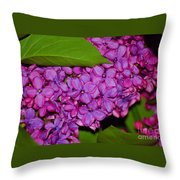 Lilac In The Dark Throw Pillow