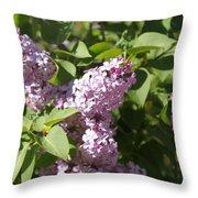 Lilacs 5544 Throw Pillow