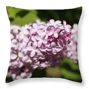 Lilacs 5549 Throw Pillow