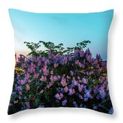 Lilacs And Sunset To Blue Hour Transition Over Gamla Stan In Stockholm Throw Pillow