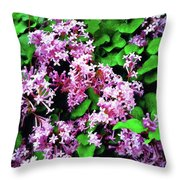 Lilacs In May Throw Pillow