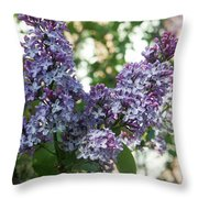 Lilacs In Spring Throw Pillow