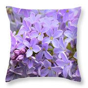 Lilacs-lavender Lovely  Throw Pillow
