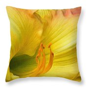 Lilied Curves Throw Pillow