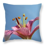 Lilies Art Prints Pink Lily Flower Giclee Art Prints Baslee Troutman Throw Pillow