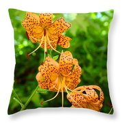 Lilies Art Tiger Lily Flowers Canvas Prints Floral Baslee Troutman Throw Pillow