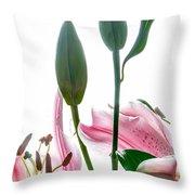 Pink Oriental Starfire Lilies Throw Pillow
