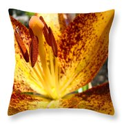 Lilies Glowing Orange Lily Flower Floral Art Print Canvas Baslee Troutman Throw Pillow