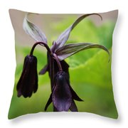 Lilies Of Brown Throw Pillow