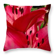 Lilies Of The Oaks Throw Pillow