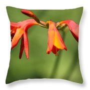 Lilies On Fire Throw Pillow