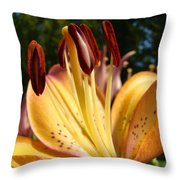 Lilies Orange Glowing Lily Flowers Giclee Prints Baslee Troutman Throw Pillow