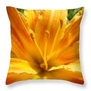 Lilies Orange Yellow Lily Flower 1 Giclee Art Prints Baslee Troutman Throw Pillow
