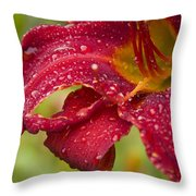 Lilly After Rain Throw Pillow