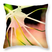 Lilly Flower Pastel Throw Pillow