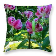 Lilly Love Throw Pillow