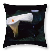 Lilly Of The Tears Throw Pillow