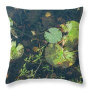 Lilly Pad Close Up  Throw Pillow