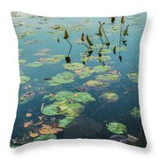 Lilly Pad In Pond  Throw Pillow